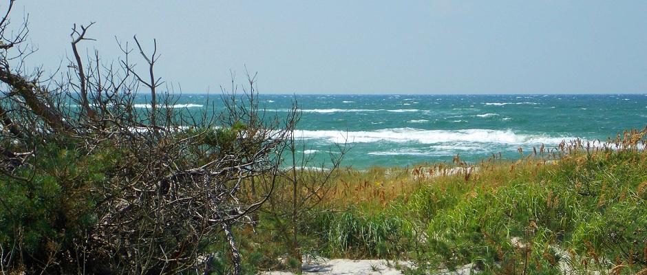 Strand an der deutschen Ostsee