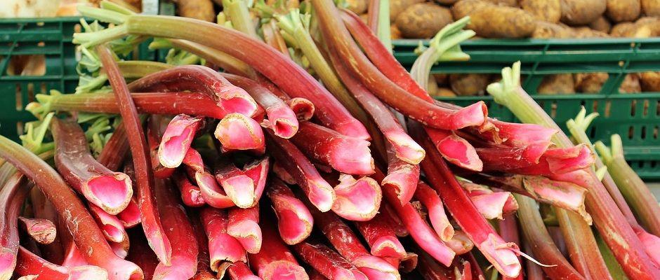 Gemüse Rhabarber