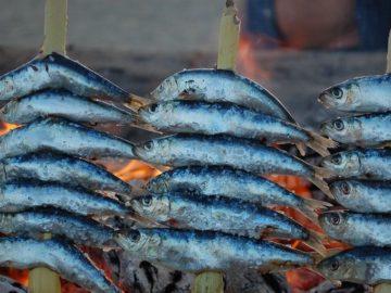 Sardinen auf dem Grill - Bildquelle: gavilla/Pixabay - Public Domain (CC0 1.0)