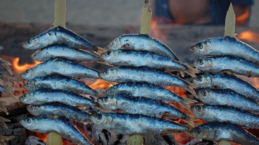 gegrillte Sardinen